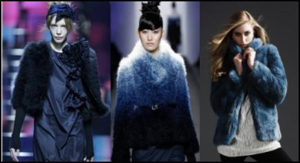 Majolica Blue - These first two fur jackets were on the Autumn 2009 catwalk and the far right jacket is an Autumn 2009 high street buy from the Per Una range at Marks & Spencer.