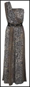 Leopard Print Maxi Dress on Leopard  Animal   Snake Print Maxi Dresses For 2012