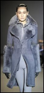 Coat & Huge Shawl Fur Collar.