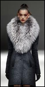 Grey Coat With Massive Tipped Fur Shawl Collar.