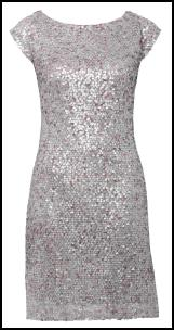 Silver Sequin Shift Dress.
