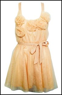 Rose Corsage Dress from Rare and Opulence Spring Summer 2011.