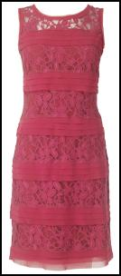 Pink Lace & Pleat Layer Dress.