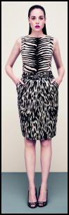Hobbs Animal Zebra Style Print Top & Skirt.