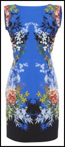 Oasis SS12 Blue Print Dress.