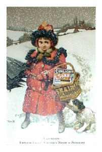 Picture of a girl in a red coat in the snow with Sunlight Soap
