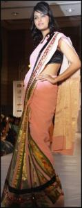 Pink Sari With Heavy Border