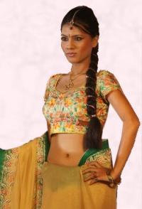 Navel Revealing Yellow and Green Choli and Sari.