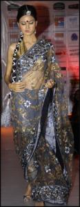 Transparent Embroidered Grey Blue Saree