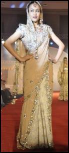 Sari Pallu Over Face - Vibrant Fashion Week Gujarat India 2010