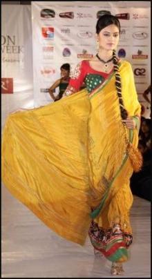 Yellow Gold  Sari Model - Vibrant Fashion Week Gujarat India 2010
